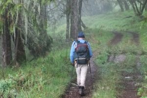 Hiking vs Trekking - are they different?